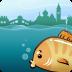 Venice tides icon